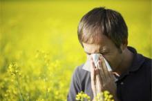 بهترین آنتی هیستامین های طبیعی برای کاهش آلرژی