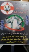 شهرستان ملایر میزبان مسابقات قهرمانی کاراته کشوری سبک کیوکوشین کاراته تزوکا