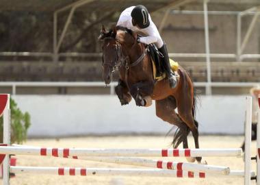 درخشش سواركاران همدانی در مسابقات پرش با اسب جام کرامت